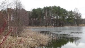 salotes ezeras 1